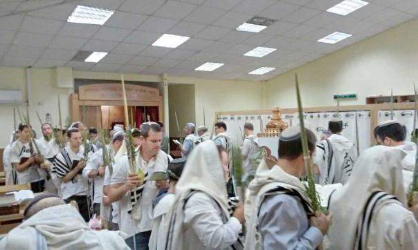 הציבור בקי בנעימות שני הנוסחים. סוכות בבית הכנסת של קהילת בני עקיבא בירוחם צילום: יאיר קלייטמן