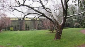 פנינה אדריכלית ואמנותית. קרן ביילר
