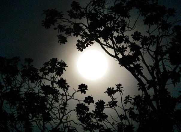 """ההתפלמסות החז""""לית בקביעת לוח השנה הירחי מעיד על השינוי שביקשו לחולל בחיי הרוח והחברה בישראלצילום: רויטרס"""