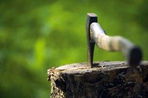 צילום: Thinkstock