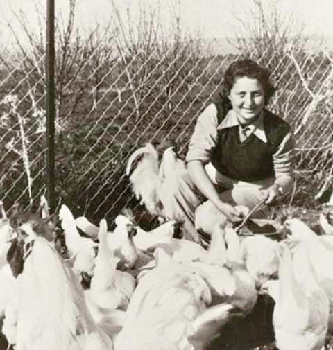 נחשבה למסוגרת וסנובית. סנש בבית הספר לחקלאות, נהלל, 1941.