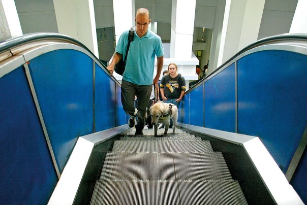 מאות אקדמאים עורים. סטודנט עם כלב נחיה, האוניברסיטה העברית. צילום: פלאש 90