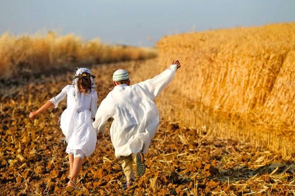 שמיטה כעצירה של המירוץ הכלכלי. ילדים בשדה  צילום: מרים צחי