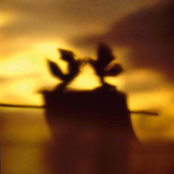 """יורם בוזגלו, מתוך הסדרה """"בצל־אל""""         מוצג בביאנלה לאמנות יהודית עכשווית, מוזיאון היכל שלמה, ירושלים"""