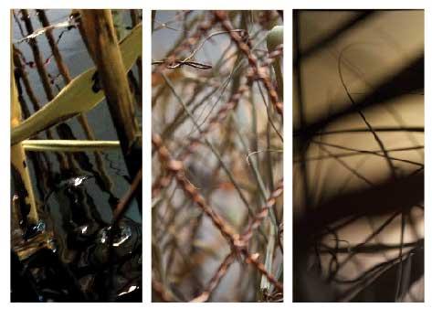 גיא ניסנהויז, פרטים מתוך Cu2013. מתוך תערוכה המוצגת בבית האמנים עד 12.10    צילום: לי זלבה