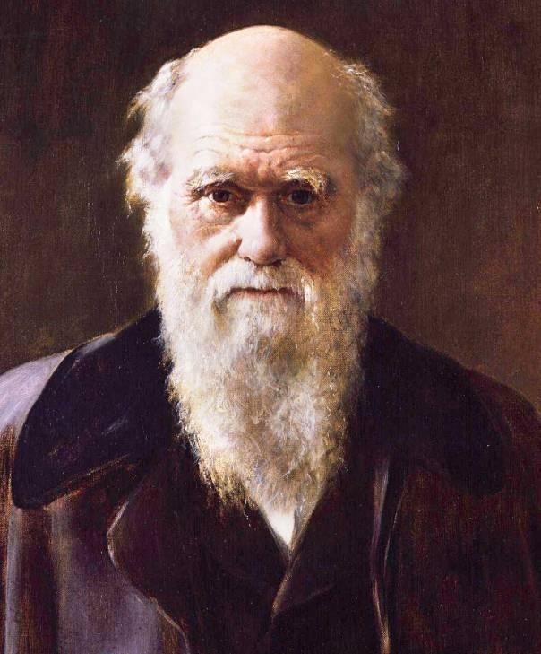 האדם הוא בן דודם של השימפנזים. צ'ארלס דרווין, ג'ון קולייר, 1881