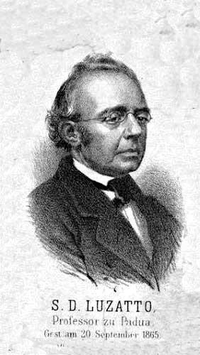 שמואל דוד לוצאטו, 1865