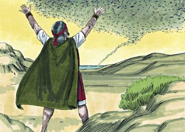 אם הניסים שאנו חווים באופן יומיומי אפשריים, גם הניסים שקרו במצרים אפשריים.  מכת הארבה, ג'ים פאדג'ט, 1984