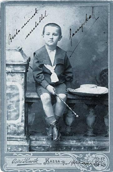 הופך אירוע יומיומי למשהו גורלי. הילד שנדור מאראי, 1904  צילום: Henrik Cséri