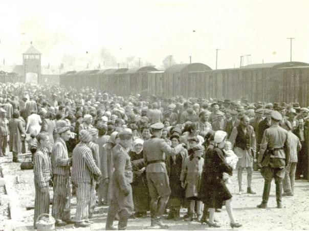 למעלה מחצי מיליון יהודים נטבחו תוך חודשיים בלבד. יהודים הונגרים בהגיעם למחנה ההשמדה אושוויץ צילום: אי.פי