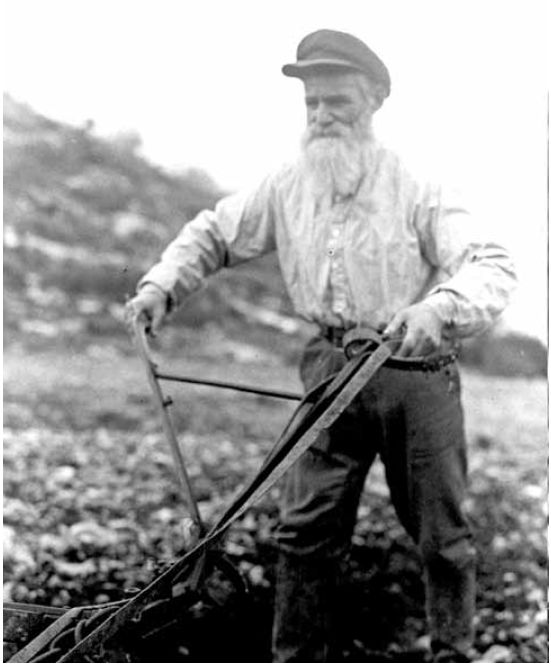"""לשמור על רוחה הסוציאלית של השמיטה. חקלאי בכפר חסידים, 1937 צילום: לע""""מ"""