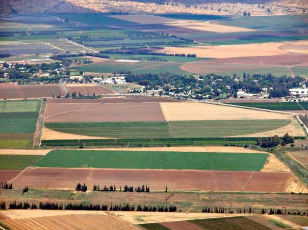 השמיטה מפלה בין המגזר החקלאי לאחרים. שדות חקלאים בעמק החולה  צילום: אליעזר הורוויץ
