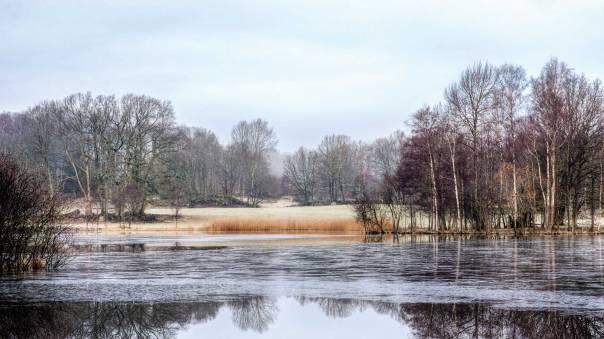 ארצות סקנדינביה כעולם אחר, קר ואפל  צילום: שאטרסטוק