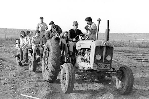 להמתיק את האדמה השחורה, הקשה, הכבדה. תלמידי בית הספר החקלאי בנהלל  צילום: פריץ כהן, לע״מ