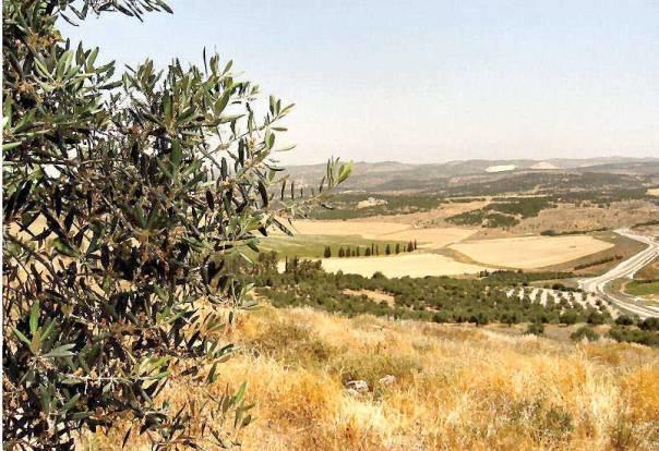 מבט מתל עדולם להרי יהודה  צילום: דניאל ונטורה