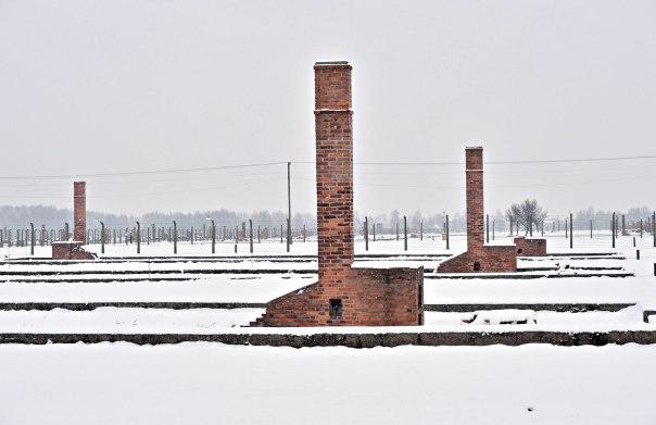 נכלא במחנה בשל היותו קומוניסט. אושוויץ צילום: אי.פי.אי