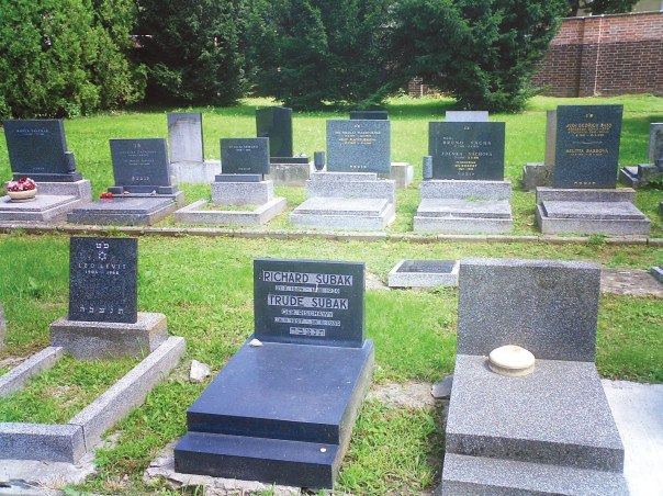 הכניסה לבית הקברות היהודי בברנו ולחלקת הקברים שבה נטמן אפר היהודים צילומים: אליהו בירנבוים