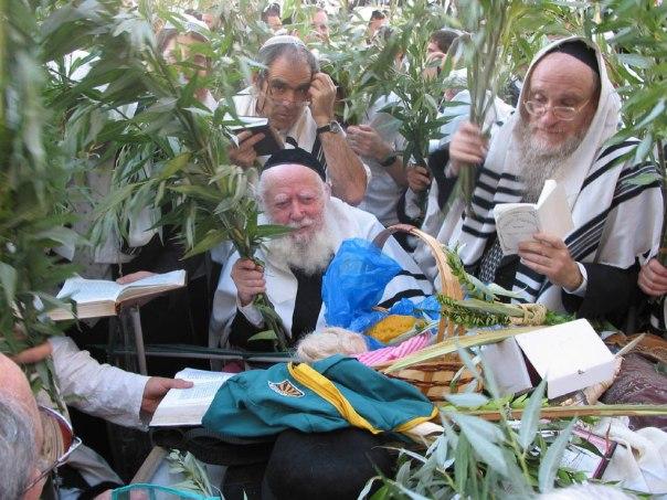 הרב אברהם שפירא בכותל, הושענא רבה צילום: באדיבות המשפחה