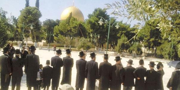 החוק מחייב שוויון בין בני כל הדתות, וכאן מתקיימת אפליה בוטה כלפי היהודים. קבוצת חרדים בתפילה בהר הבית, 2013 צילום: התנועה לכינון המקדש
