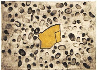 הר הבית כבית. דליה אריאלי, למען ירושלים, 2008