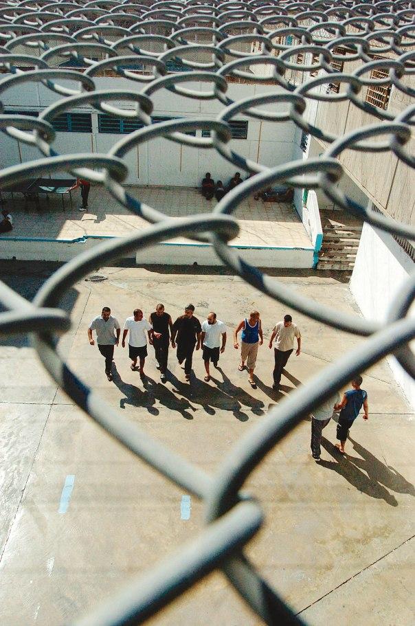 לא להפחית פשיעה, אלא לשמר את המשטור והמשמוע. כלא איילון צילום: נתי שוחט, פלאש 90