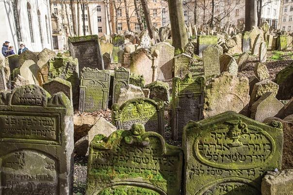 """""""הקבר היה ריק לחלוטין"""". בית קברות יהודי צילום: נועם רבקין פנטון, פלאש 90"""