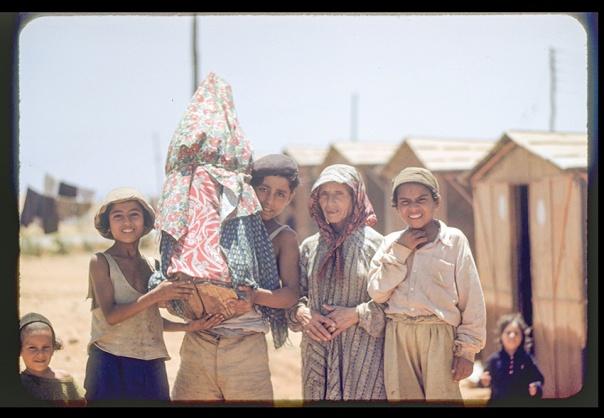 מחזיקים ספר תורה במחנה העולים בית ליד, 1950;
