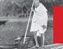 תהליךהתשובהשלגנדהי | אייזיקלובלסקי