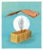 רבדיםשלקדושה | מאירשפיגלמן